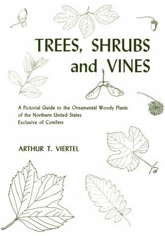 Download Trees, shrubs and vines